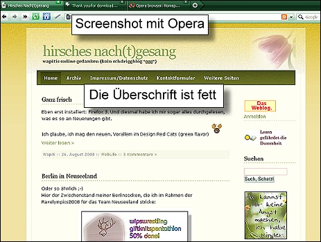 Screenshot meines Blogs mit Opera